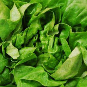 Malbouffe et acné : pensons salade !